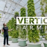 Next Gen Farming Without Soil and 90% Less Water    GRATEFUL
