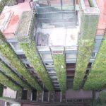 El jardín vertical más grande del mundo está en Bogotá