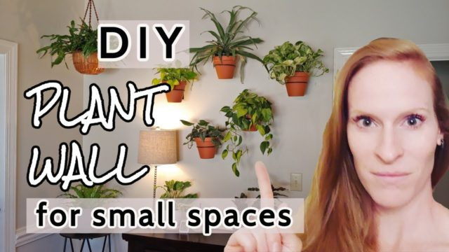 DIY Plant Wall | Small Space Plant Display | Vertical Houseplants