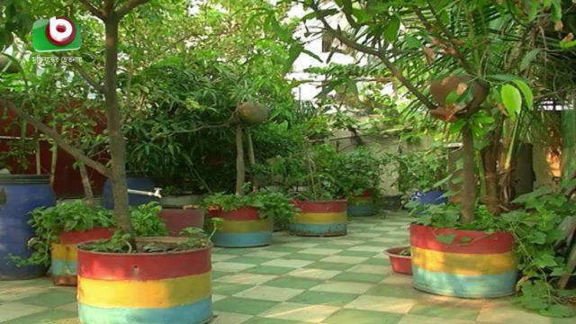 রাজধানীতে ছাদ বাগান দিন দিন বেশ জনপ্রিয় হয়ে উঠছে | Rooftop Garden | Bangla News
