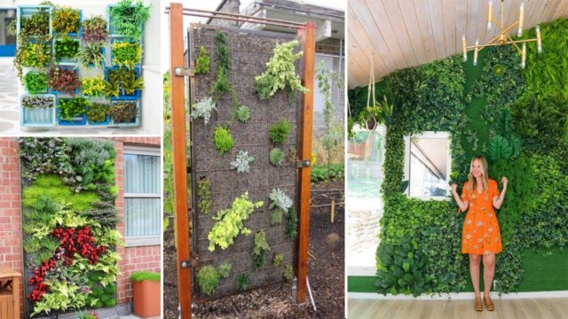 80+ Stunning Vertical Garden for Wall Decor Ideas | john Ideas