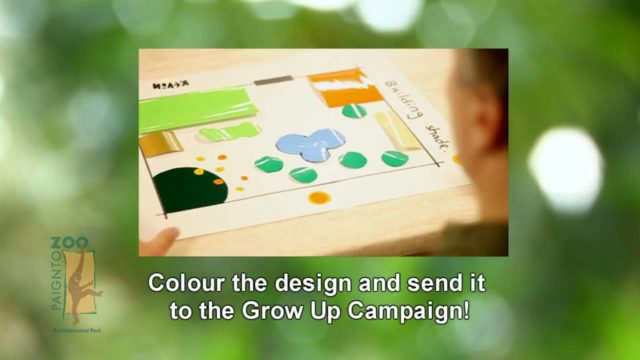 Grow Up! – Creating the 60 second school garden