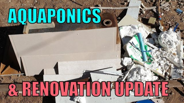 Aquaponics & House Renovation UPDATE