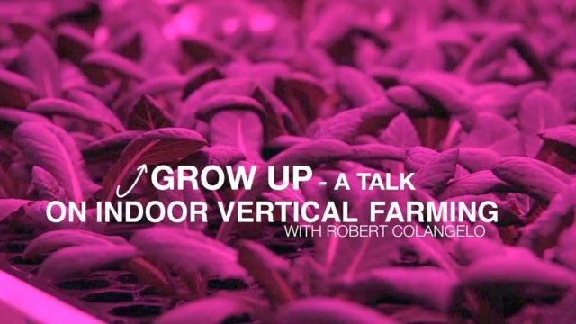 Grow Up – A Talk on Indoor Vertical Farming