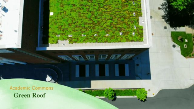 Sustainability  – Academic Commons Green Roof