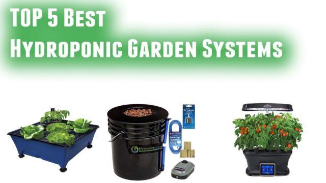 Best Hydroponic Garden Systems 2019