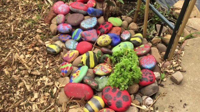School Garden May 2019