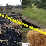 Making a shed living/ green roof for £25 (shed, garage, lean too, man cave, cabin) part 1 the before