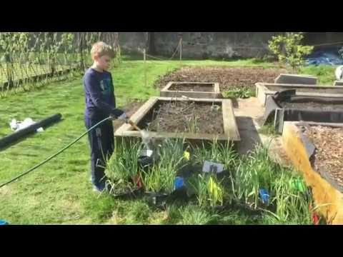RHS Young School Gardener of the Year 2019 – William Rae (KS2 Finalist)
