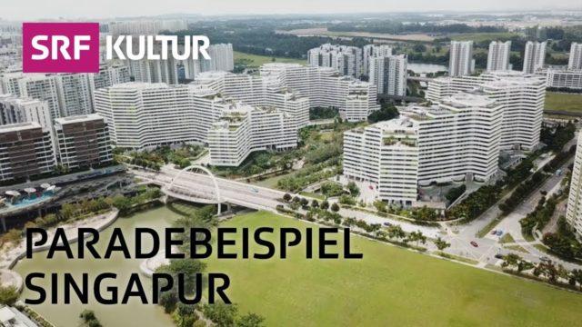 Hochhäuser: Vertikales Grün – gut für Seele und Klima | SRF Kulturplatz