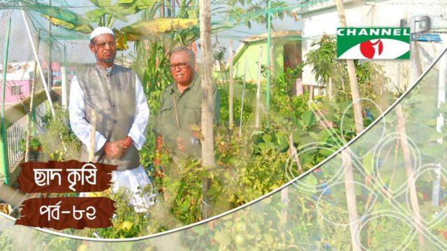 Rooftop farming | EPISODE 82 | HD | Shykh Seraj | Channel i | Roof Gardening | ছাদকৃষি |