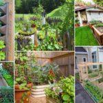 Top 100 DIY Vegetable Garden Ideas | DIY Garden