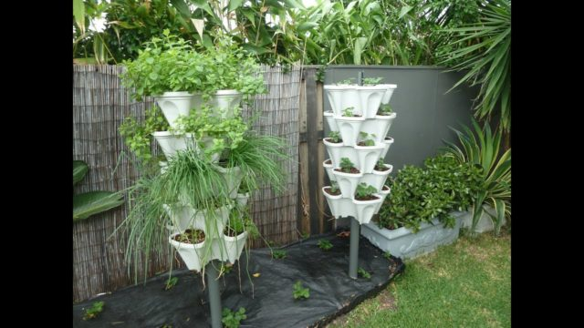 How to set-up Mr Stacky Tower Gardens with no overhead tubing!