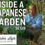 Indoor Gardening Tips | P. Allen Smith's Garden Style (619)
