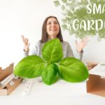 CLICK & GROW SMART GARDEN UNPACKING AND SETUP | urban and indoor gardening The Daily Wonders