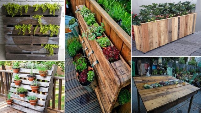 100 Creative Ways to Upcycle Pallets in your Garden