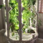 DIY Indoor Grow Tower Vertical Hydroponics – Week 12: Las Vegas