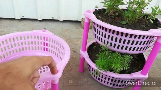How to make a Beautiful Plant Basket For Winters