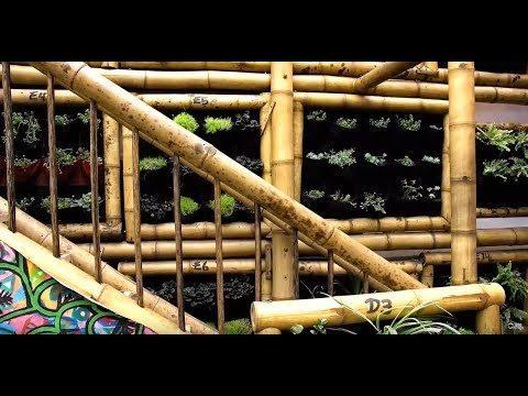 Jardines Verticales – Plantas y Jardines