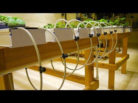 Part 3 – NFT Tables – Basement Hydroponic LED Garden Tour