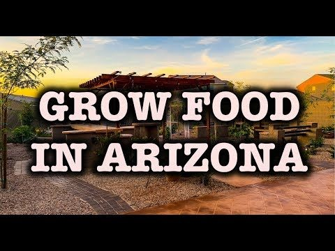 Grow Your Own Food in Phoenix Arizona
