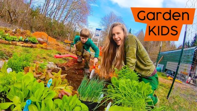 PLANTING ORGANIC GARDEN with KIDS