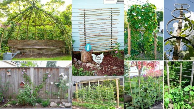 120 Easy & Cheap DIY Garden Trellis Ideas | DIY Garden