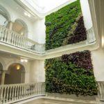 """Jardín vertical en Cádiz: Apartamentos """"El Armador"""""""
