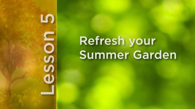 How To Grow Anything: Refresh Your Summer Garden | The Great Courses