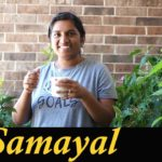 Terrace Garden in Tamil | Maadi Thottam | Balcony Garden Tour vlog in Tamil | Madras Samayal