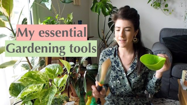My essential indoor gardening tools