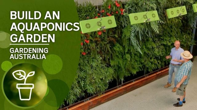 Build your own aquaponics garden