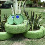 GreenShala in Sunbeam Gramin School|| gardening class ||garden on concrete