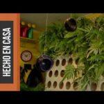 Instrucciones para crear bellos Jardines verticales
