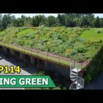 Green Roofs Whilst Rooftop Gardens | Living Green | Episode 114