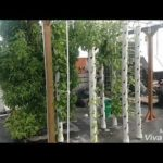 Vertical grow towers and changes