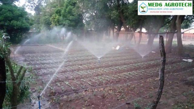 Max bird  Sprinklers and SIME Mikro at Demo garden, Dept of Production, Lira, Northern Uganda