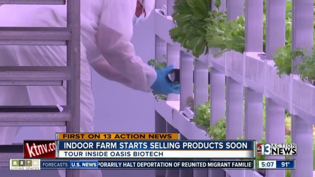 Indoor farm opens in Las Vegas