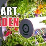 Top 5 Smart Indoor Gardening Kits