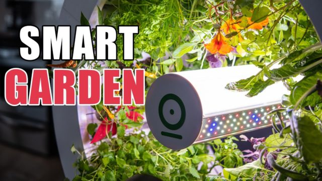 Top 5 Smart Indoor Gardening Kits