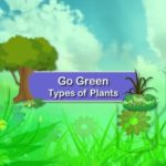 Types of Plants   Science For Kids   Grade 1   Periwinkle