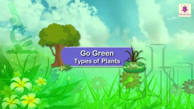 Types of Plants | Science For Kids | Grade 1 | Periwinkle
