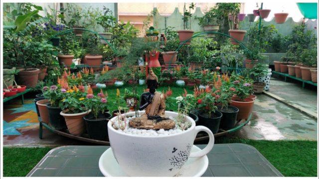 Rooptop garden makeover meet my new beautiful rooftop garden