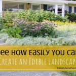 Landscape And Garden Design Lessons From History