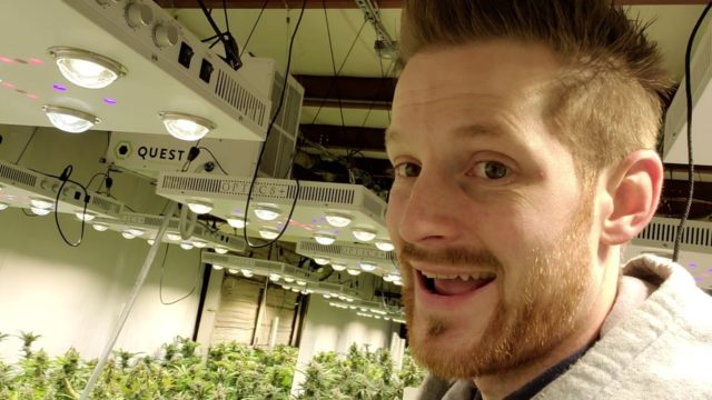 Hicksford Farms Oklahoma – Commercial Medical Cannabis Grow Facility – Harvesting the Optic 8 Room