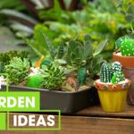 Garden Projects with the Kids | Gardening | Great Home Ideas