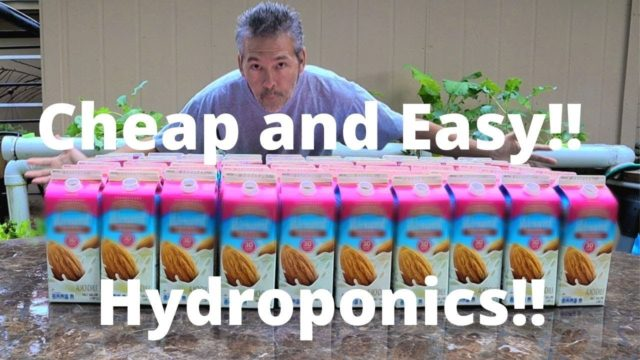 Grow Food Cheap / Food Grade / Plant Based Diet / DIY Hydroponics