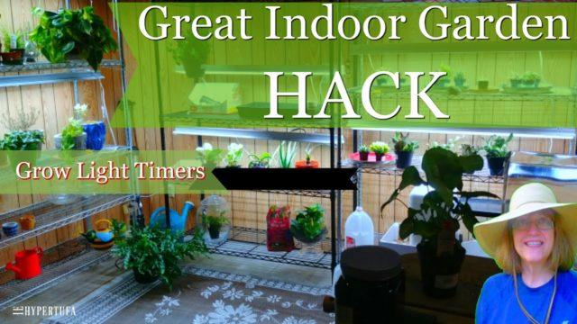 Best Indoor Gardening Hack – Grow Light Timers