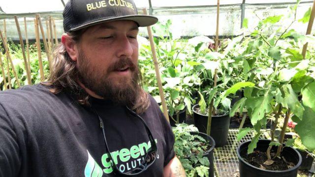 Regenerative gardening education