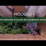 Jardines Verticales y Cuadros Vivos: Introducción -UNC- UPV- CAMPUS VIRTUAL